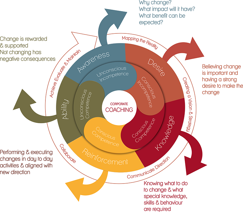 synquity coaching and change model